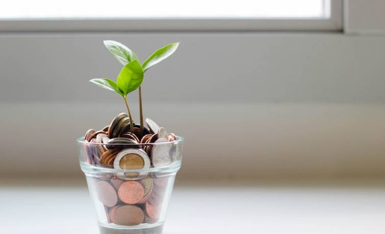 Green Shoots of Innovation in the Grey World of Retirement